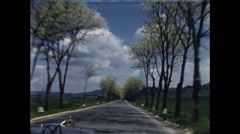 Budding Trees Line Road in Italy - stock footage