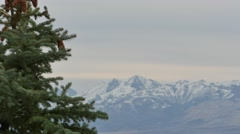 Mountains and trees Utah Stock Footage