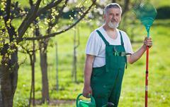 portrait of a senior man gardening in his garden (color toned im - stock photo