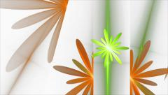 Spring, Floral Background, Orange and Green flowers - stock footage