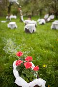 splendid wedding venue - blossoming orchard on the 1st of May - stock photo