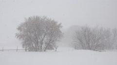 Winter snow blizzard rural farm trees in storm 4K 010 Stock Footage