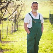 portrait of a senior gardener in his garden/orchard (color toned - stock photo