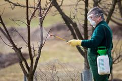Using chemicals in the garden/orchard: gardener applying an inse Kuvituskuvat