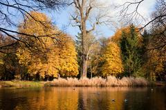 Lazienki Park Autumn Scenery Stock Photos