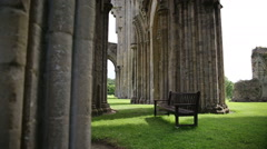 Shattered Colony in the Glastonbury Abbey Stock Footage