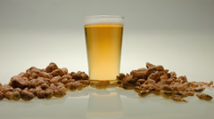 A PEANUT  DRINKS A PINT OF BEER.  TIME LAPSE. Stock Footage