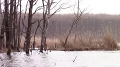 Fishing lake raising waters Stock Footage