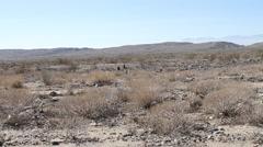 Desert Indio California 2 - Desert Landscape Stock Footage
