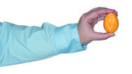 Stock Photo of Female arm holding a orange egg in the hand