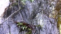Placerita waterfalls small fall close zoom static HD Stock Footage