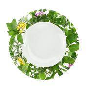 White plate with fresh herbs and spices around it - stock photo
