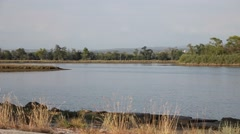 Pan on a river in the lagoon Stock Footage