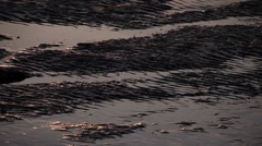 Sand shapes on the seaside with the sunset light Stock Footage