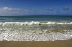 Martinique, Sainte Anne, beach of  les Salines Stock Photos