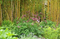 Stock Photo of Brittany, le Jardin Lepage in Pleumeur Bodou