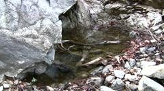 Placerita waterfalls static deep still pool Stock Footage