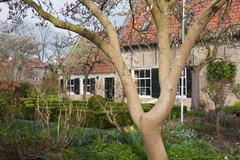 Dutch house with ornamental garden with blooming magnolia Stock Photos