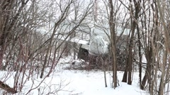 Cessna Skyhawk crashes in the  wood Stock Footage