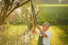 Portrait of a handsome senior man gardening in his garden, on a Stock Photos