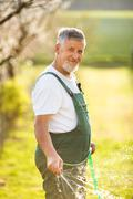 Portrait of a handsome senior man gardening in his garden (color Stock Photos