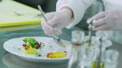 Professional Chef is Garnishing Luxury Dish in Restaurant Stock Footage