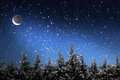 Beautiful winter landscape with snow covered trees at night Stock Photos