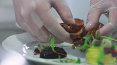Professional Chef is Garnishing Luxury Red Meat Dish in Restaurant Stock Footage