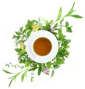 Cup of tea with fresh herbs and spices around it - stock photo