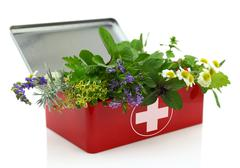 Stock Photo of Fresh herbs in first aid kit