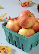 Gala apples Stock Photos