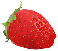 Delicious and juicy stawberry Stock Illustration