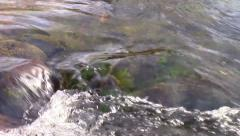 Zoom out of rushing water resulting in the rapids of Oak Creek in Sedona, AZ - stock footage