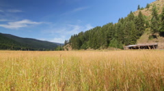 Hay grass valley mountains old dolly Stock Footage