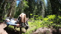 Hiker resting bench forest nature slider Stock Footage