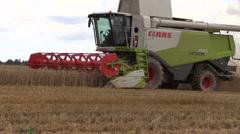Agriculture combine thrash rye field on cloudy day Stock Footage