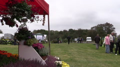 People buy flowers and plants in botanical festival fair Stock Footage