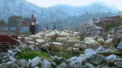 Shepherd pulls water from the well and gives the sheep to drink in the pen - stock footage