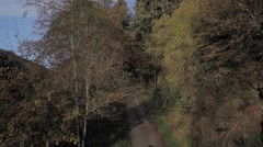 The Colors of the Black Forest Stock Footage