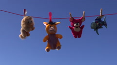 Colorful  soft animal toys on clothes-line string and sky background Stock Footage