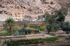 Egypt, St. Catherine's Monastery, cloister garden Stock Photos