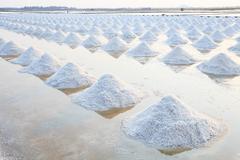 Heap of sea salt in original salt produce farm make from natural ocean salty  Stock Photos