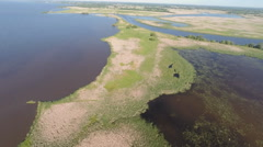 Marsh and Lake Aerial Video 1 - stock footage