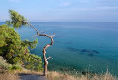 Greece, Halkidiki, wild landscape - stock photo