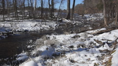Winter Trout Stream Stock Footage