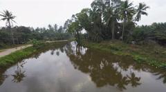 Jungle ground to air Stock Footage