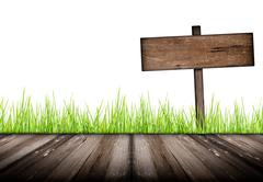 Wood plank on natural green grass field and sign wood old - stock illustration