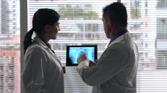 Doctors looking at x-ray by window - stock footage