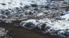 Winter Trout Stream 4 Stock Footage