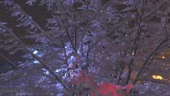 AERIAL: City light shining through snowy tree in winter night Stock Footage